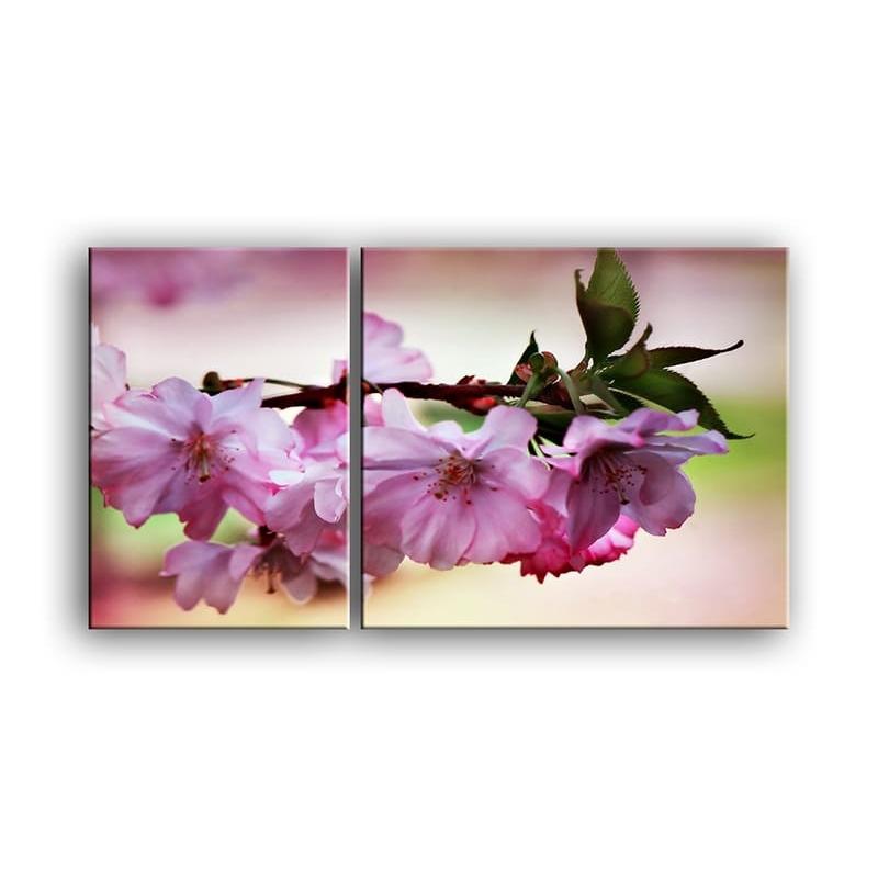 цветы вишни C7-001