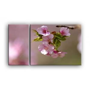 цветы вишни C7-003