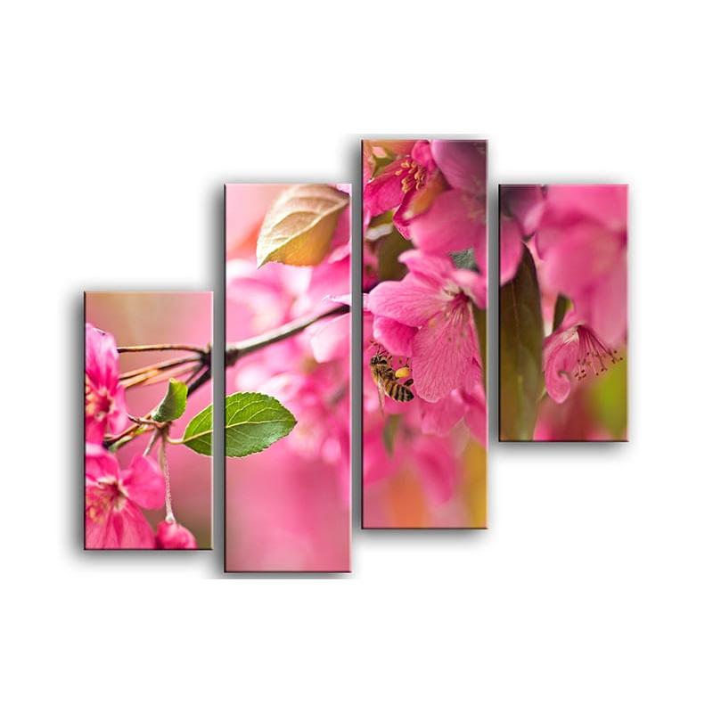 цветы вишни C7-010
