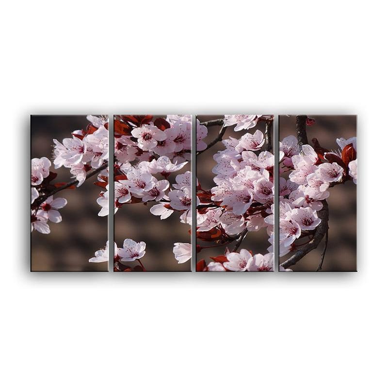 цветы вишни C7-011