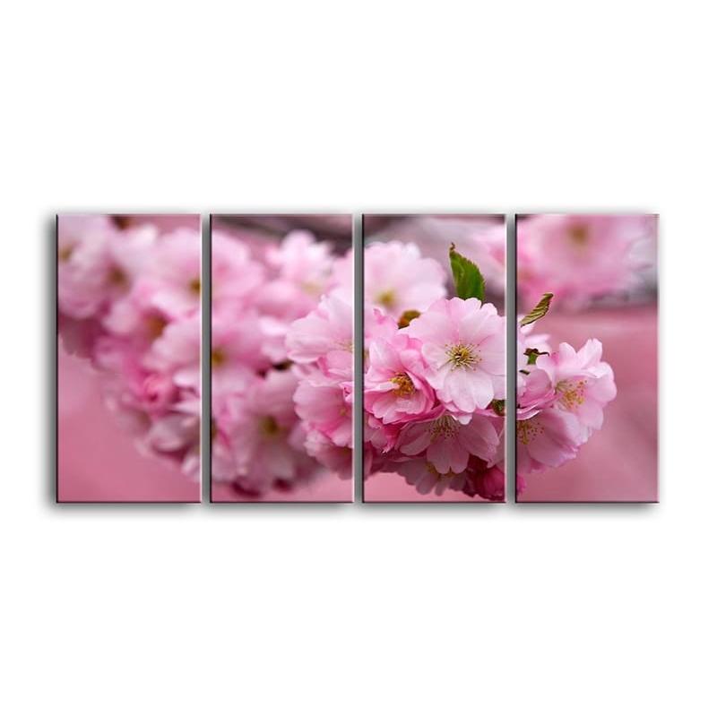 цветы вишни C7-012