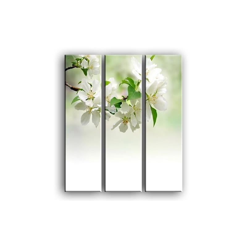цветы вишни C7-015