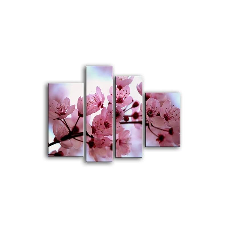 цветы вишни C7-017
