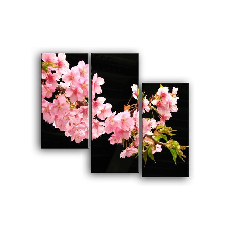 цветы вишни C7-021