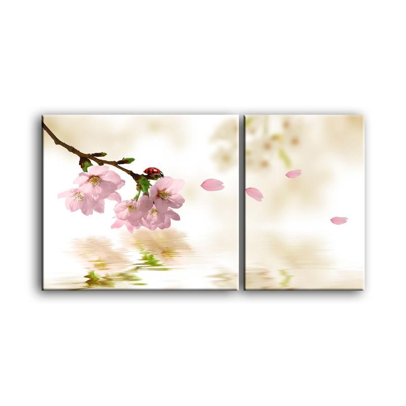 цветы вишни C7-022