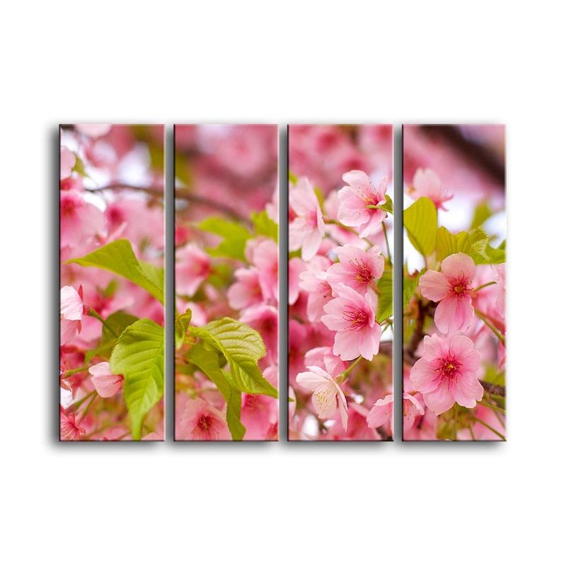 цветы вишни C7-026