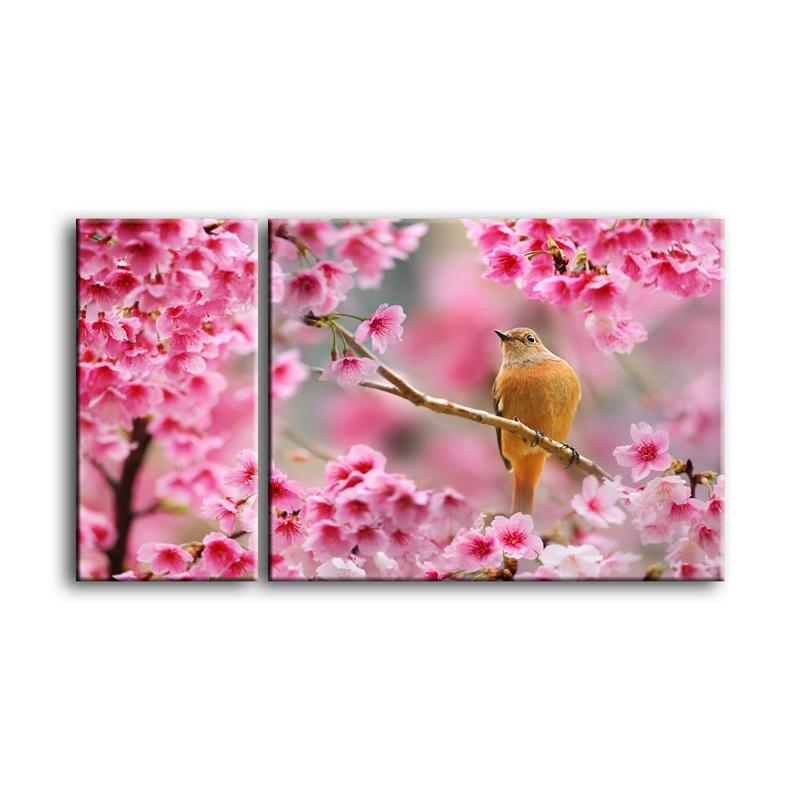 цветы вишни C7-027