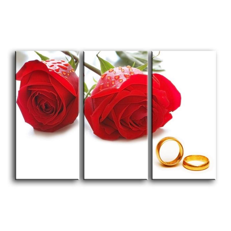 розы C1-002