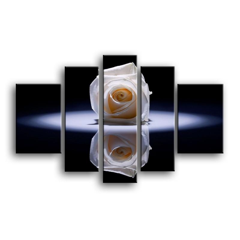 розы C1-010
