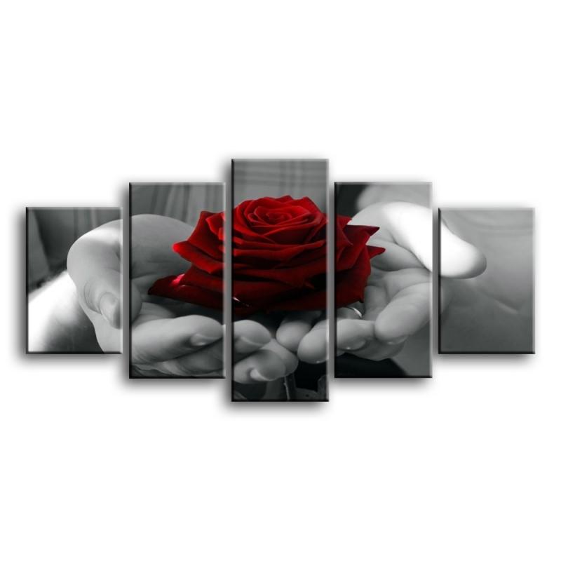 розы C1-011
