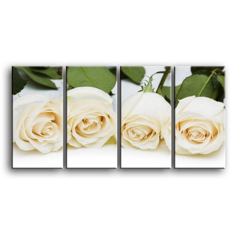 розы C1-013