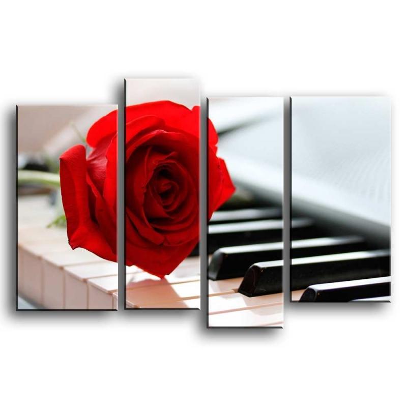 розы C1-022